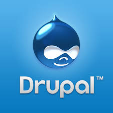 Hire Drupal Developers