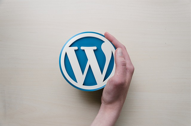 Best WordPress Development Company