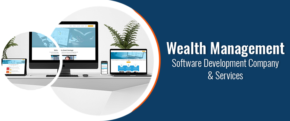 wealth management software development company & services