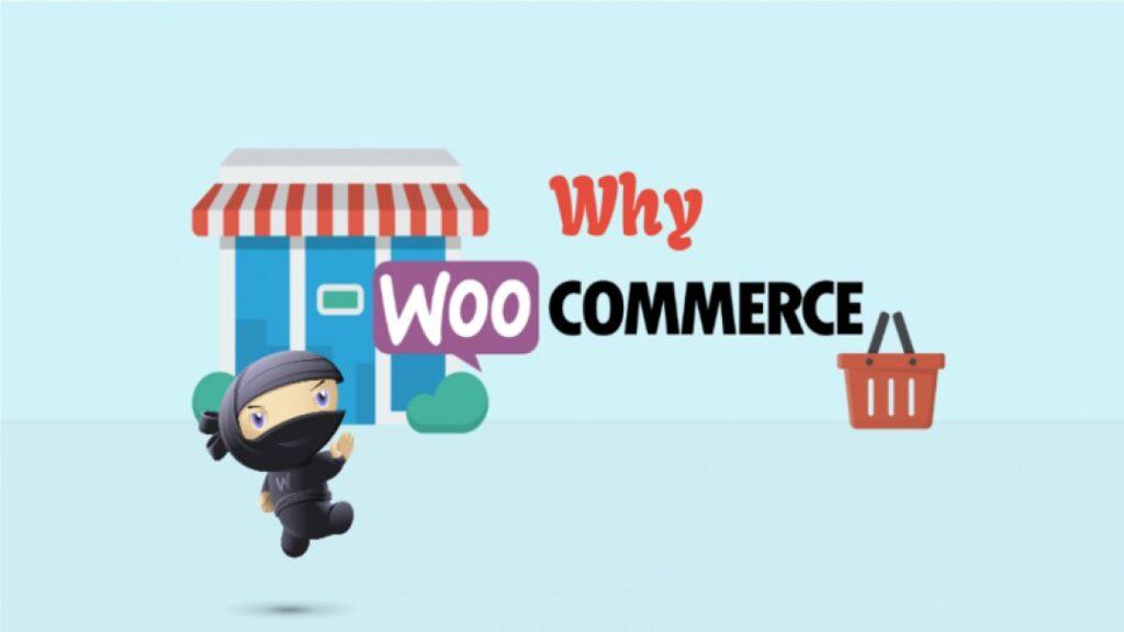 Why WooCommerce is most popular E-commerce platform