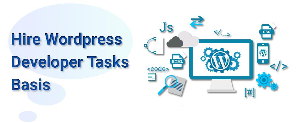 Hire WordPress Developer Tasks Basis
