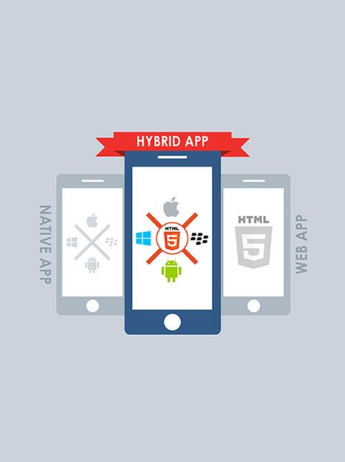 Cross Platform Mobile App