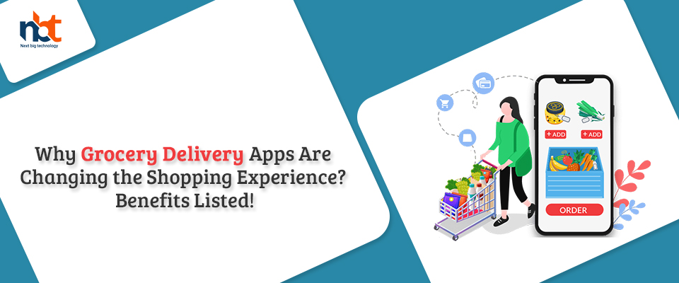 Why Grocery Delivery Apps Are Changing the Shopping Experience?
