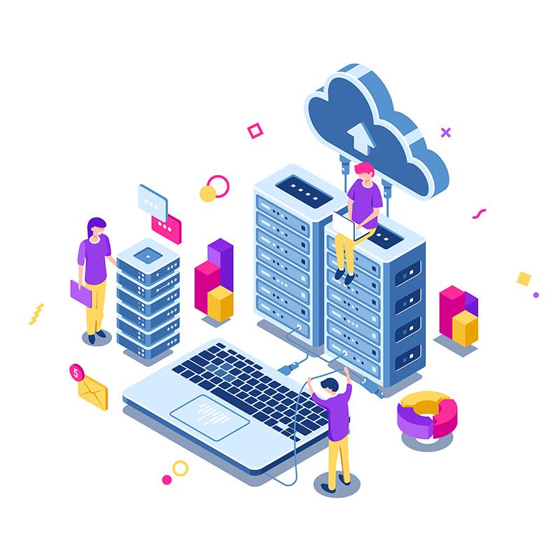 Business Process Management & App Development