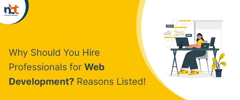 Hire Professionals for Web Development
